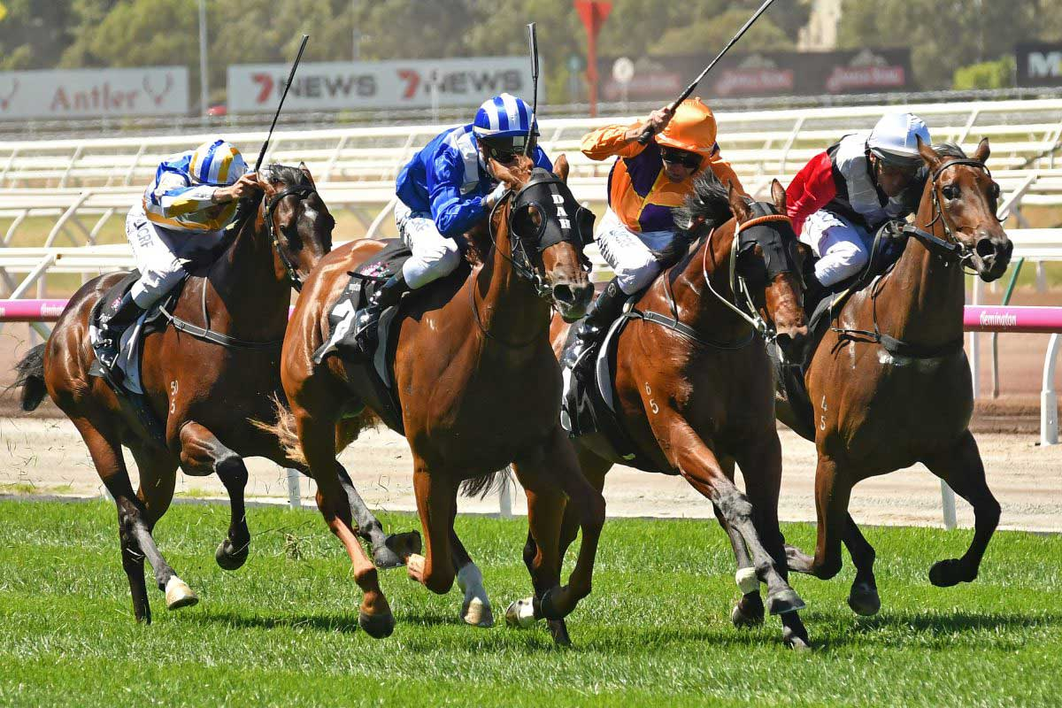 First stakes performer for Dundeel