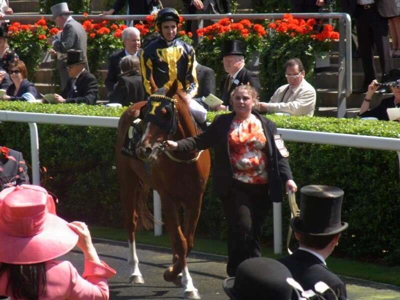 Breeder's gold trail to Royal Ascot