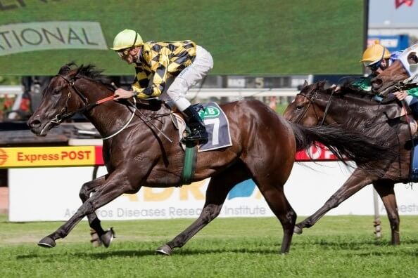 Pyrography shines for Danzero at Rosehill
