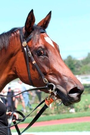 Response charges home for 2nd Group 1