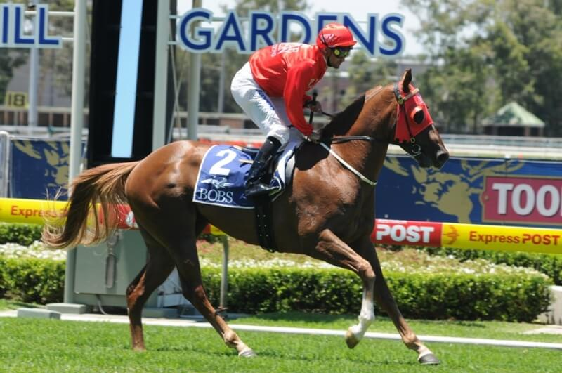 First Group 1 performer for Snitzel