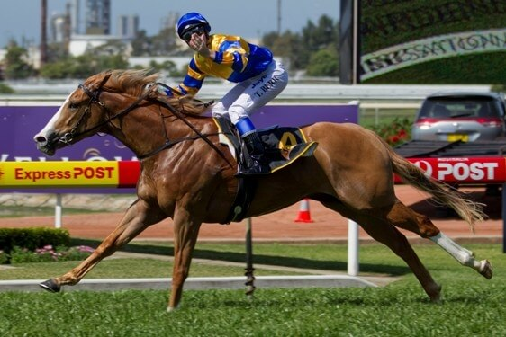 No doubt about Karuta Queen in Heritage Stakes