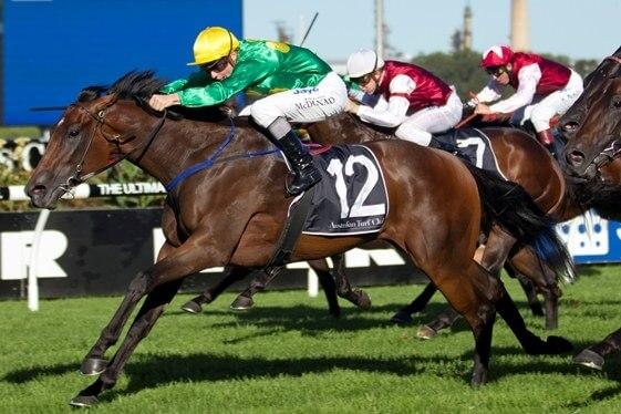 Group 2 quinella for Arrowfield Easter graduates