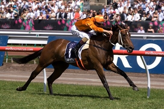 Redoute's Choice posts 85th stakeswinner
