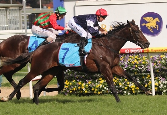 Redoute's Choice makes it look easy as 1-2-3