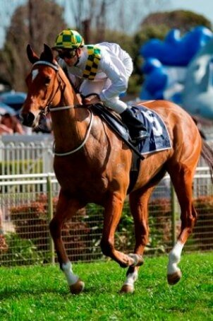 Florentina brings up 89 SW for Redoute's Choice