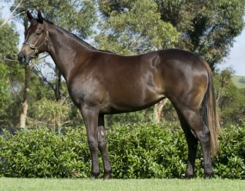 Charge Forward filly finds her groove