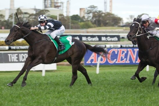 Nothing subUrban about Charge Forward filly