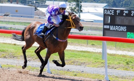 Not A Single Doubt filly smashes track record