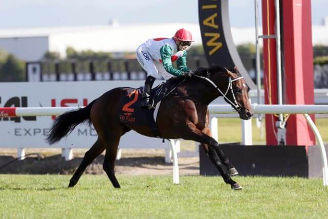 Redoute's Choice colt too classy in New Zealand