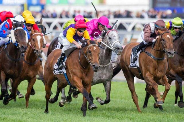 Group 1 quinella for Redoute's Choice & Snitzel