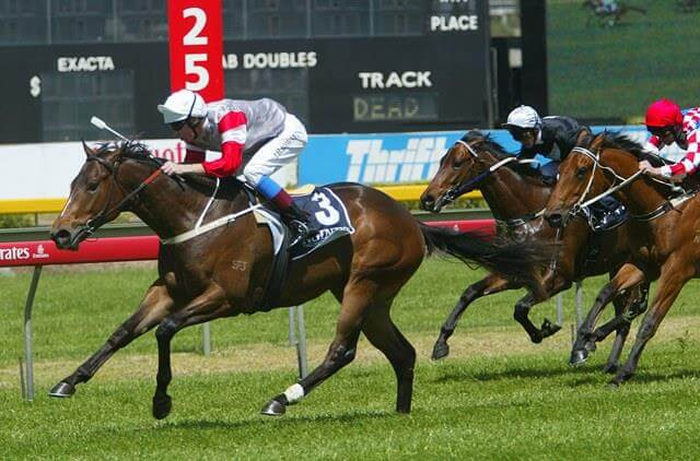 Stars emerge from first 2YO stakes races