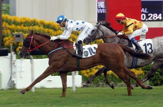 Hong Kong Group double for Arrowfield & Inglis