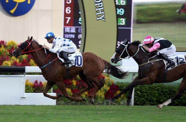 Arrowfield graduate treble at Sha Tin & Kranji