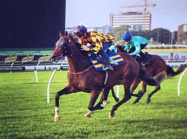 It's A Dundeel impresses in Randwick trial