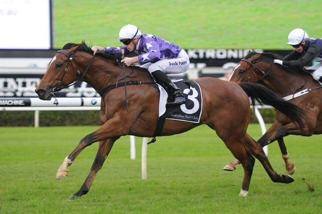 Star Thoroughbreds gets it right with All American