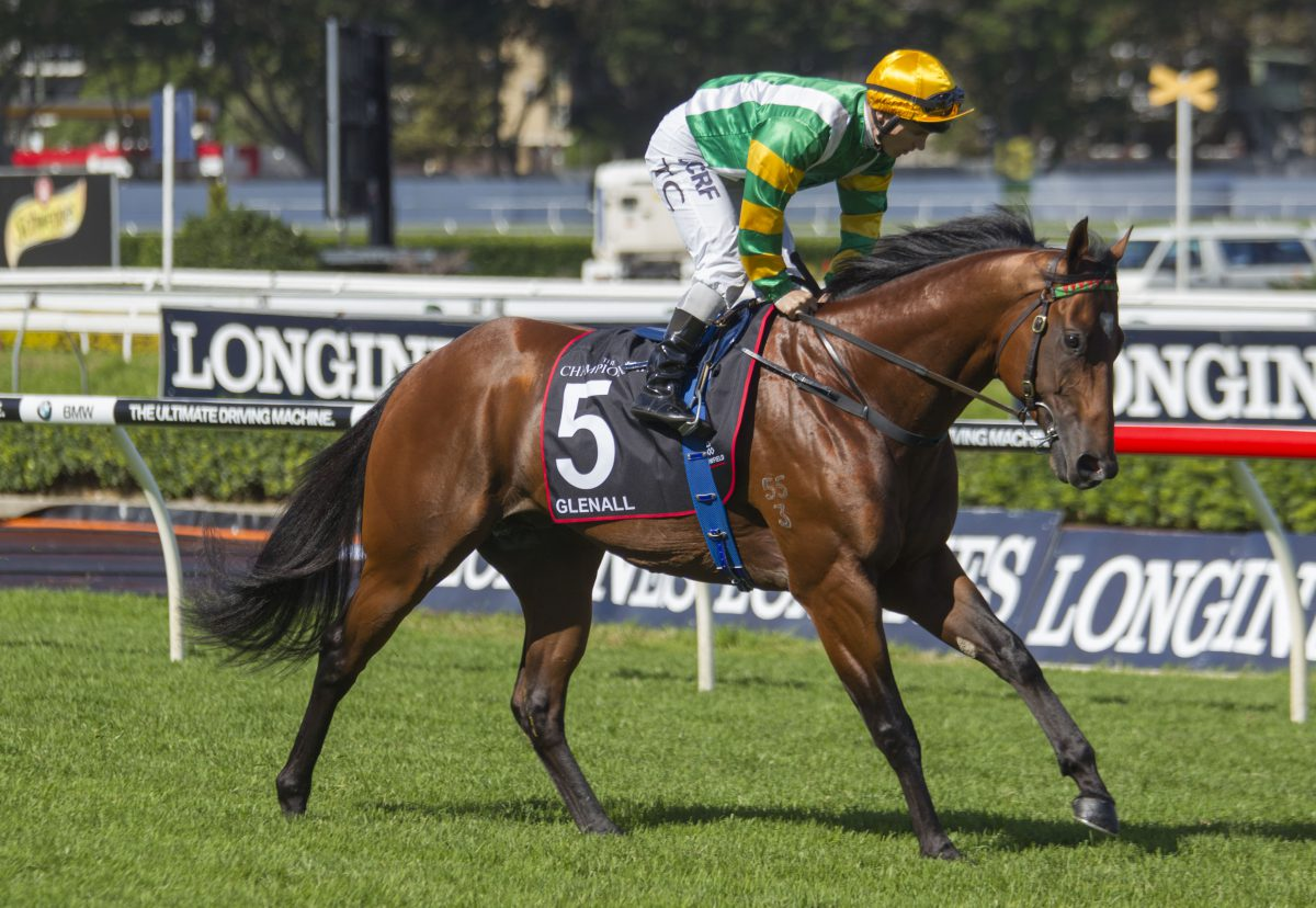 New stars rise for Redoute's Choice
