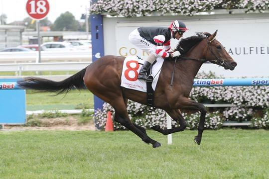 Snitzel strikes again with 18th stakeswinner