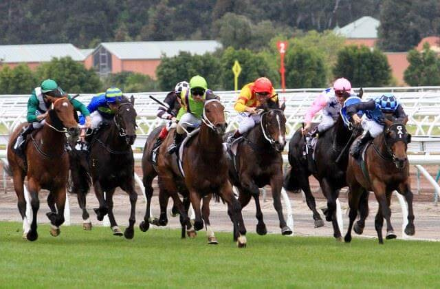 Group 1 goal for Raphael's Cat