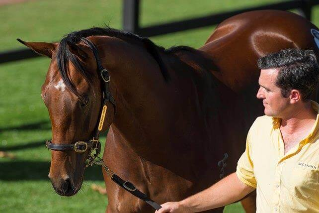 Redoute's Choice & sons dominate Easter Sale