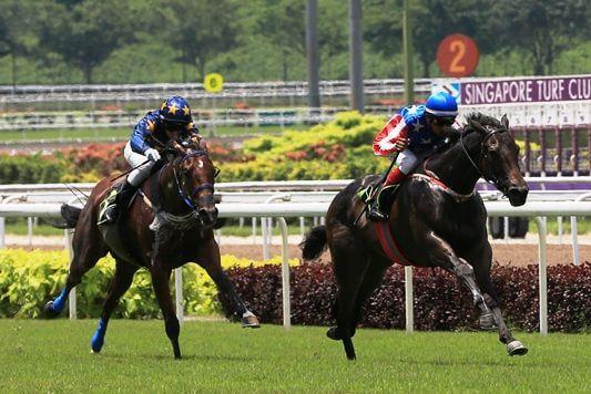 Macarthur charges into Singapore 2YO Series