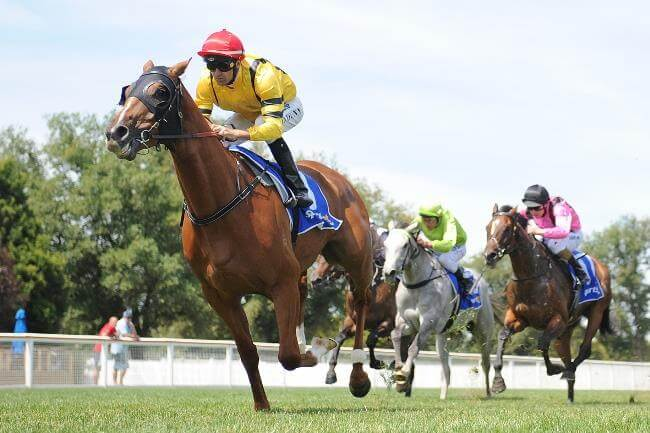 Manapine hits the Derby trail