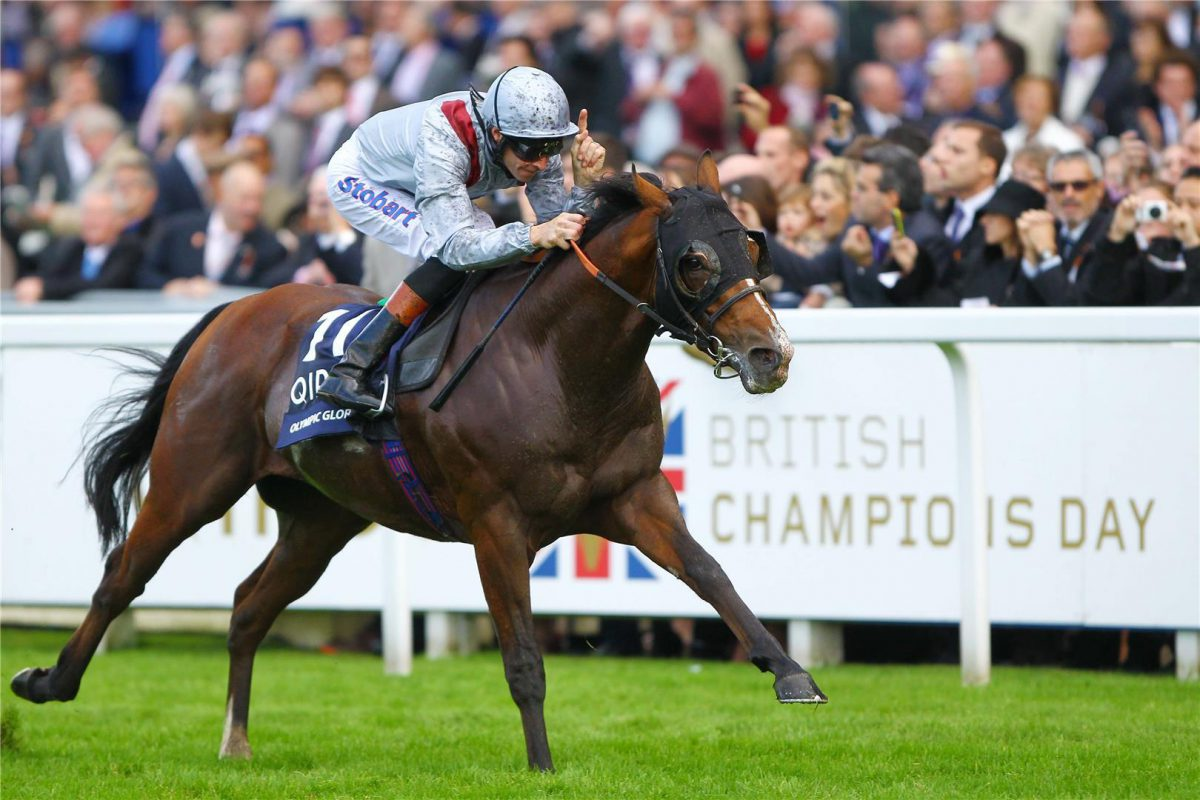 Olympic Glory to stand at Arrowfield in 2015