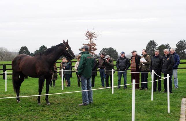 Redoute's Choice filly wins French Classic trial