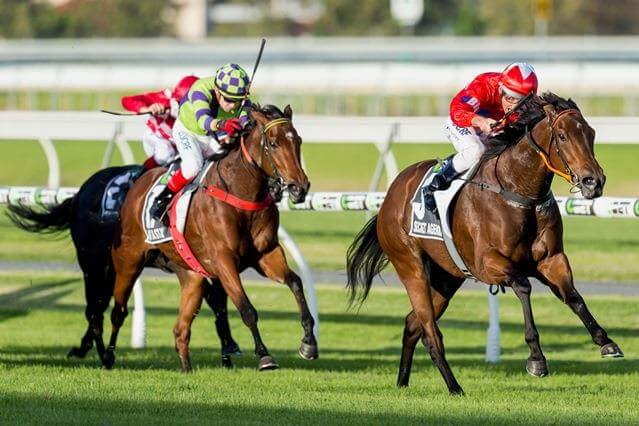 Not A Single Doubt's 6th Group 1 winner