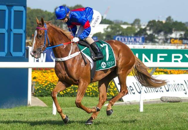 Redoute's Choice & sons on a roll