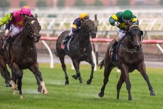 Snitzerland wins Group 1 Lightning Stakes
