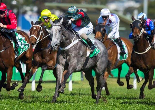 Group race target for Charge Forward mare