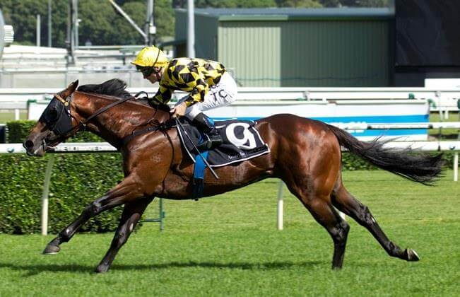 Spill The Beans wins Hawkesbury Guineas