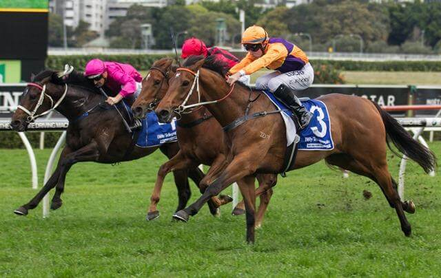 Swear makes it 136 for Redoute's Choice