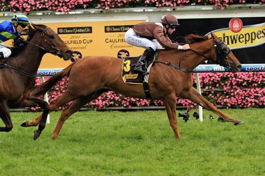 Life is Sweet at Caulfield