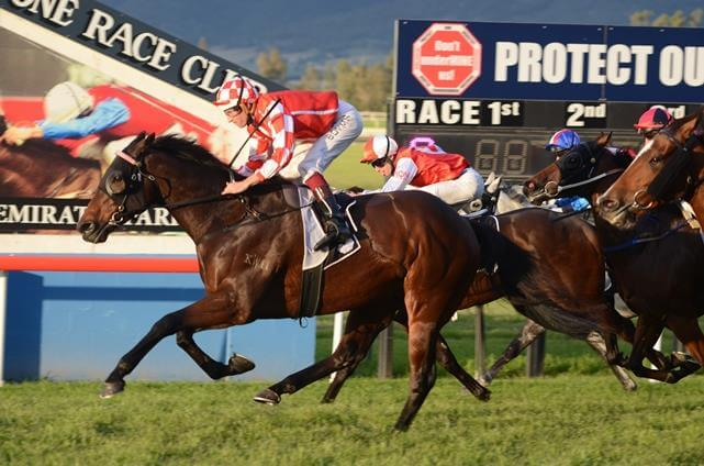 Flying Spur closes on 100 stakeswinners
