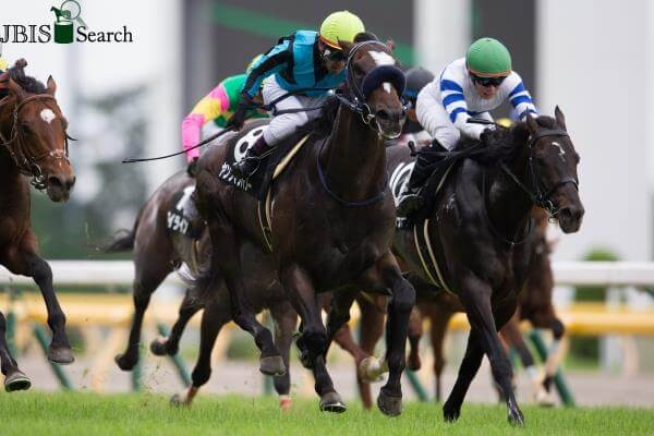 Snitzel's international stakes double