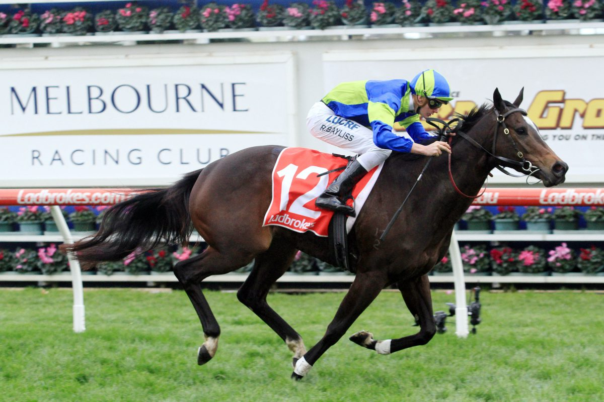 Top prices for Arrowfield graduates at Broodmare Sale