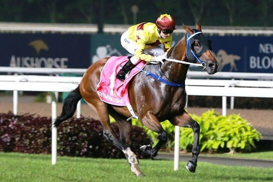 Not A Single Doubt's son wins the Kranji Mile